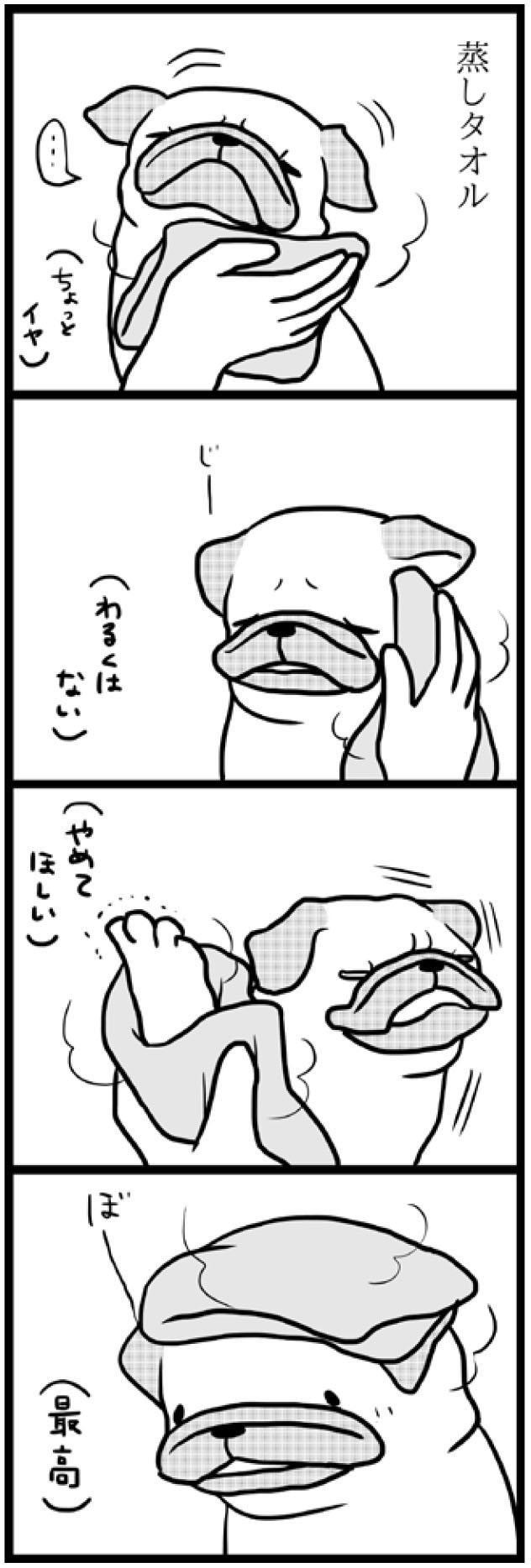 パグ2_04